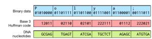 Una altre codificació fent servir ADN. (c) James Bornholt et al.